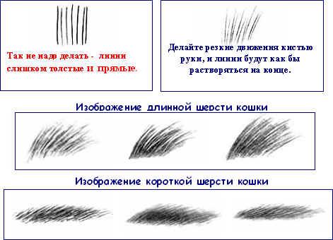 http://festival.1september.ru/articles/500439/full.h4.jpg