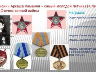 «Летунок» - Аркаша Каманин – самый молодой летчик (14 лет) Великой Отечестве