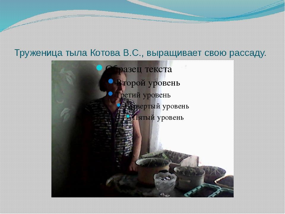 Труженица тыла Котова В.С., выращивает свою рассаду.