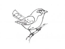 Ptica-131_389x506.jpg