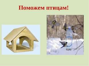 Поможем птицам!