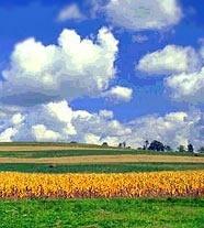oblakai
