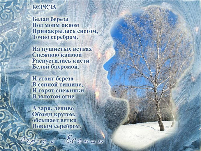 http://s44.radikal.ru/i105/1101/00/22a68971b552.jpg