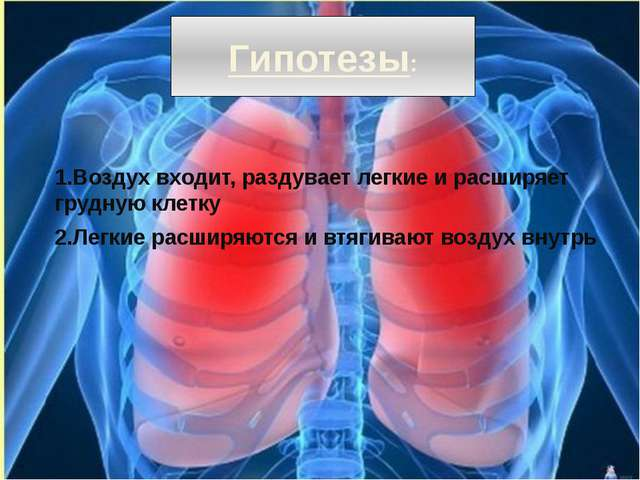 Гипотезы: 1.Воздух входит, раздувает легкие и расширяет грудную клетку 2.Легк...