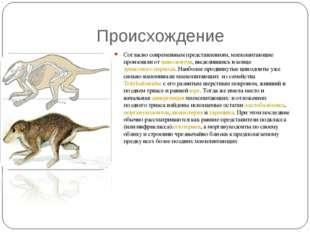 Происхождение Согласно современным представлениям, млекопитающие произошли о
