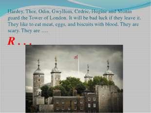 Hardey, Thor, Odin, Gwyllum, Cedric, Hugine and Munin guard the Tower of Lond