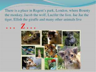 There is a place in Regent's park, London, where Bounty the monkey, Jacob the