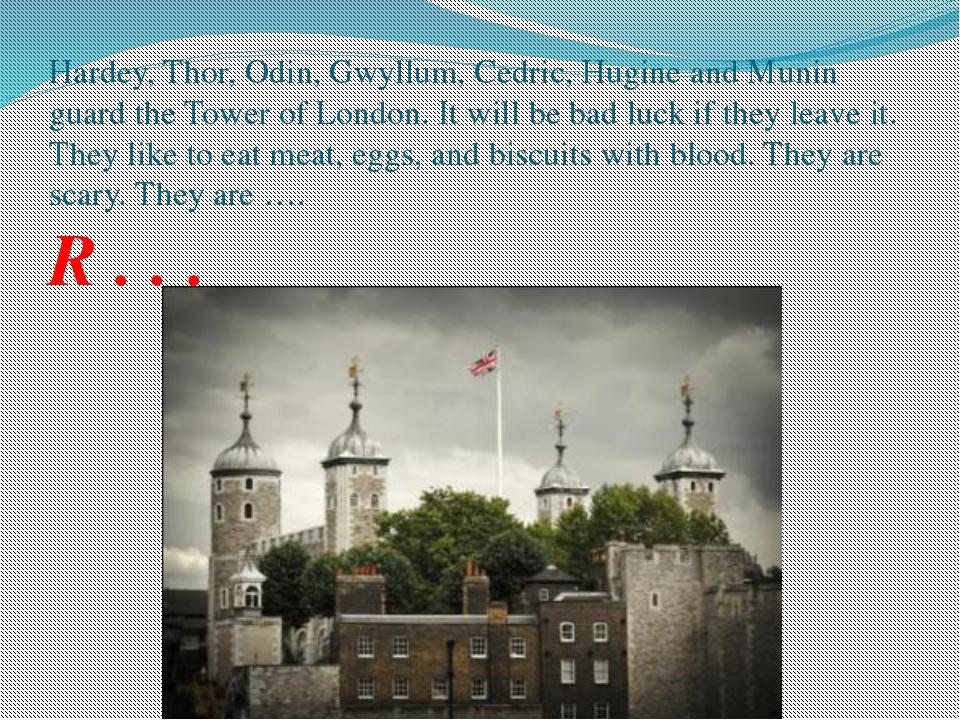 Hardey, Thor, Odin, Gwyllum, Cedric, Hugine and Munin guard the Tower of Lond...