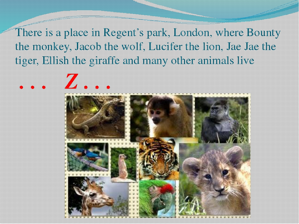 There is a place in Regent's park, London, where Bounty the monkey, Jacob the...