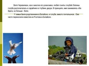 Витя Черевичкин, как и многие его ровесники, любил гонять голубей. Витины г