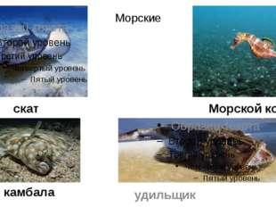 Морские камбала удильщик Морской конек скат