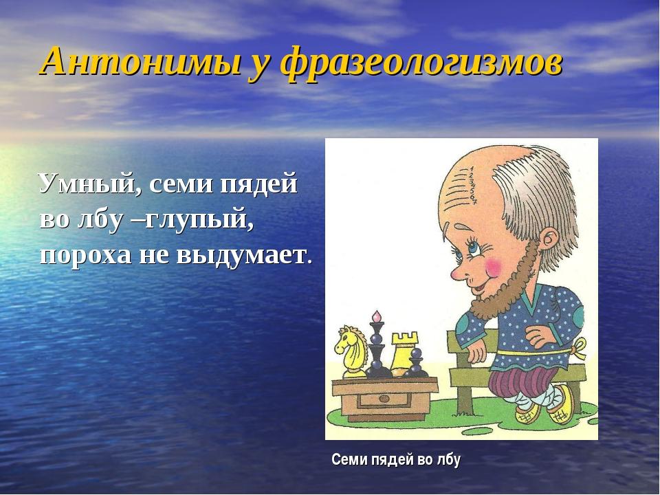 Антонимы у фразеологизмов Умный, семи пядей во лбу –глупый, пороха не выдумае...