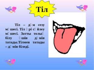 Тіл Тіл – дәм сезу мүшесі. Тіл әрі сөйлеу мүшесі. Затты толық білу үшін дәмі