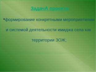 ЗадачА проекта: формирование конкретными мероприятиями и системой деятельнос
