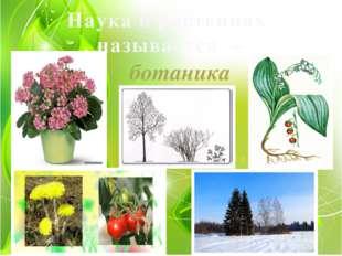 Наука о растениях называется – ботаника