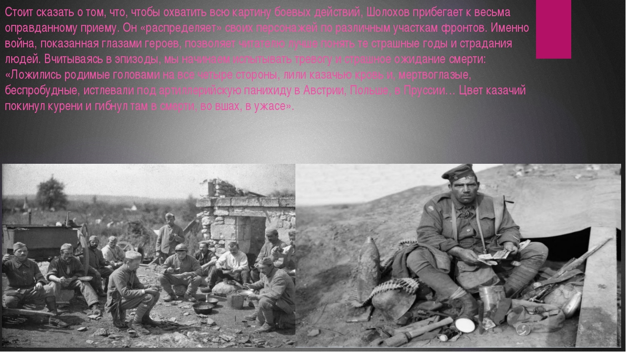 Стоит сказать о том, что, чтобы охватить всю картину боевых действий, Шолохов...