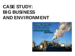 CASE STUDY: BIG BUSINESS AND ENVIRONMENT