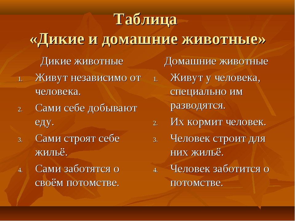 Таблица «Дикие и домашние животные» Дикие животные Живут независимо от челове...