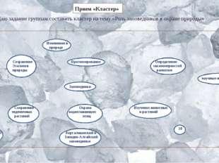 Даю задание группам составить кластер на тему «Роль заповедников в охране при