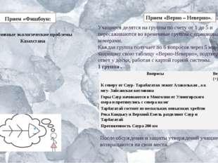 Прием «Фишбоун: Основные экологические проблемы Казахстана Прием «Верно – Н