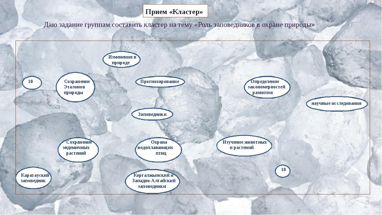 Даю задание группам составить кластер на тему «Роль заповедников в охране при...