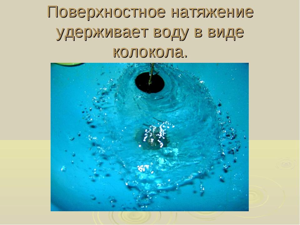 Поверхностное натяжение удерживает воду в виде колокола.