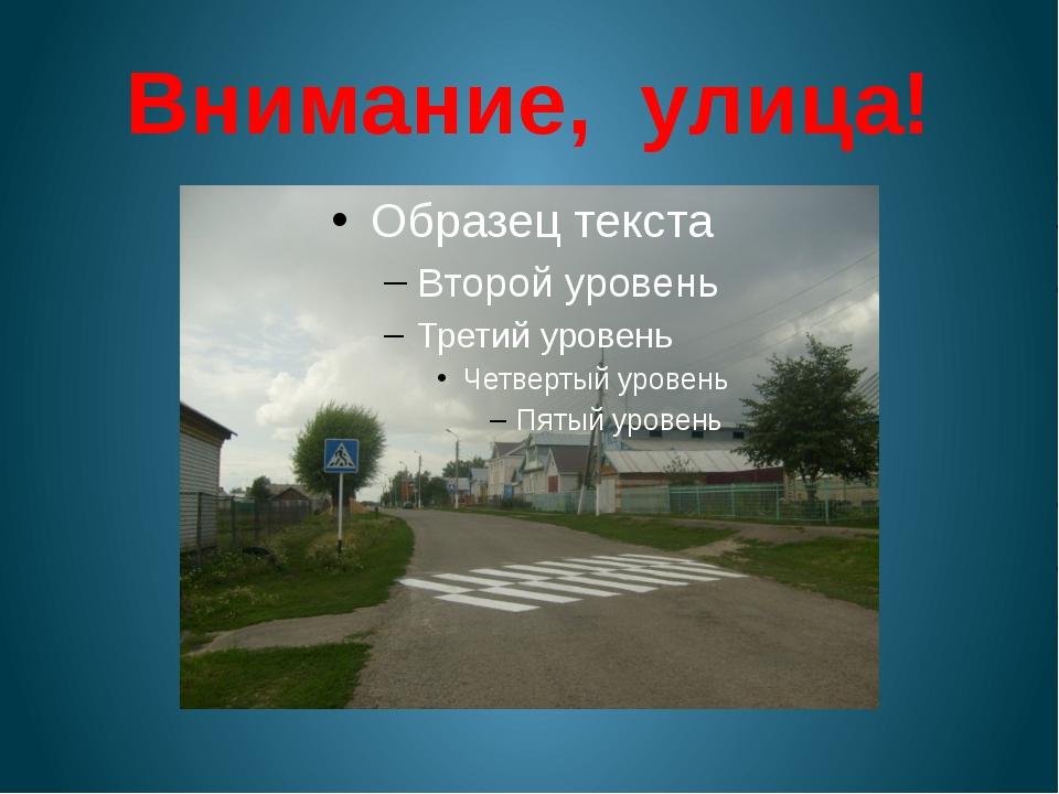 Внимание, улица!
