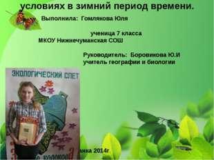 МКОУ «Нижнечуманская средняя общеобразовательная школа» Баевского района Алта