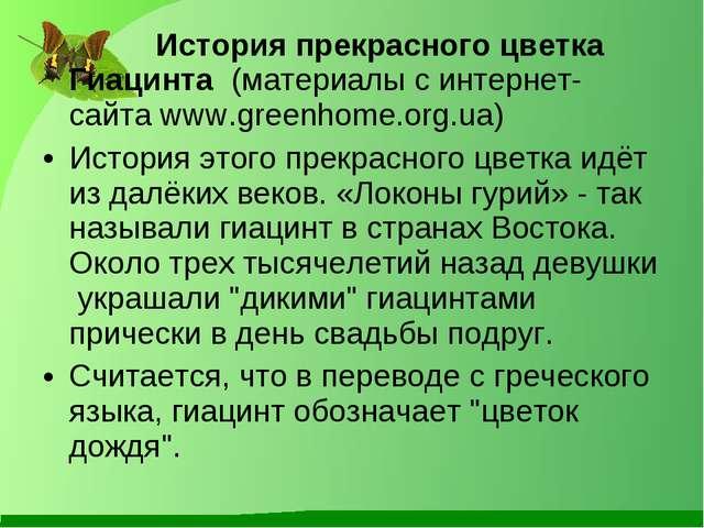История прекрасного цветка Гиацинта (материалы с интернет-сайта www.greenho...