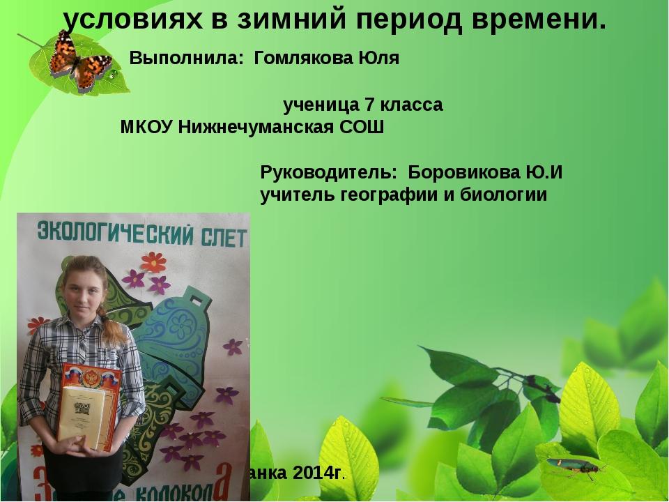 МКОУ «Нижнечуманская средняя общеобразовательная школа» Баевского района Алта...
