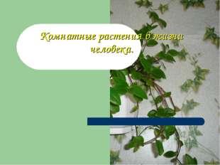 Комнатные растения в жизни человека.