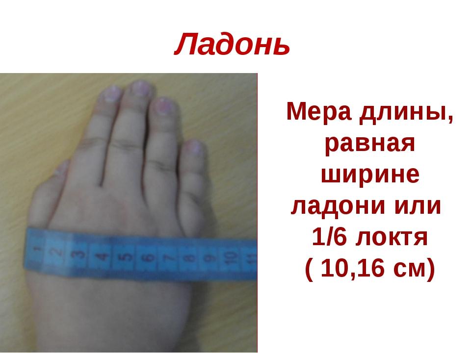 Ладонь Мера длины, равная ширине ладони или 1/6 локтя ( 10,16 см)