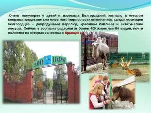Очень популярен у детей и взрослых Белгородский зоопарк, в котором собраны п