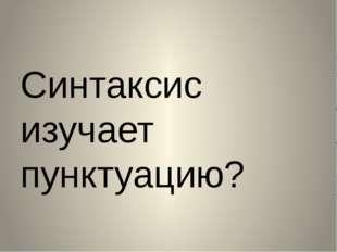 Синтаксис изучает пунктуацию?