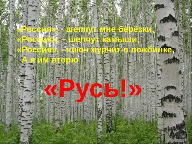 «Россия», - шепчут мне берёзки, «Россия», – шепчут камыши, «Россия», - ключ...
