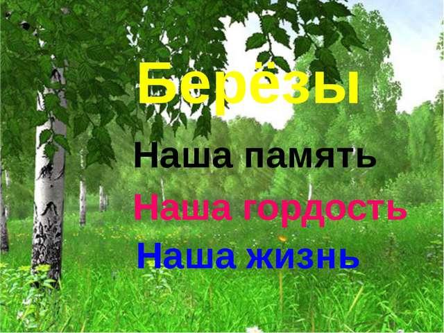 Берёзы Наша память Наша гордость Наша жизнь