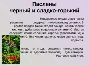 Паслены черный и сладко-горький Недозрелые плоды и все части растения содерж