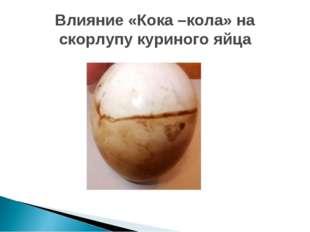 Влияние «Кока –кола» на скорлупу куриного яйца