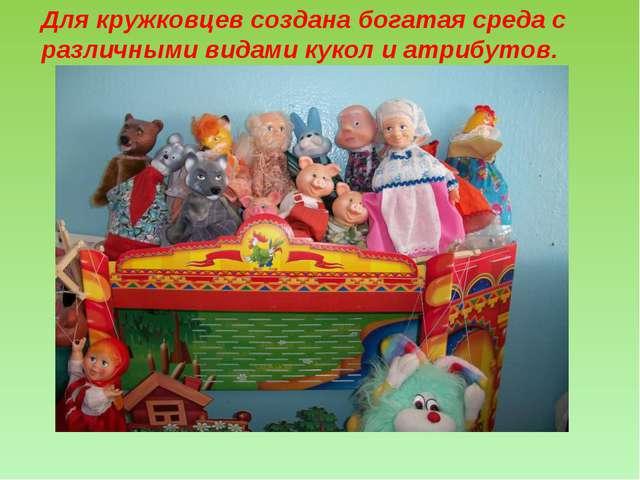 Для кружковцев создана богатая среда с различными видами кукол и атрибутов.