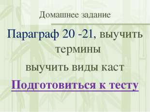 Домашнее задание Параграф 20 -21, выучить термины выучить виды каст Подготови