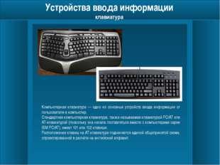 Устройства ввода информации мышь Манипуля́тор «мышь» (механическая, оптическ