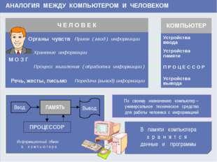 www.themegallery.com АНАЛОГИЯ МЕЖДУ КОМПЬЮТЕРОМ И ЧЕЛОВЕКОМ В памяти компьюте