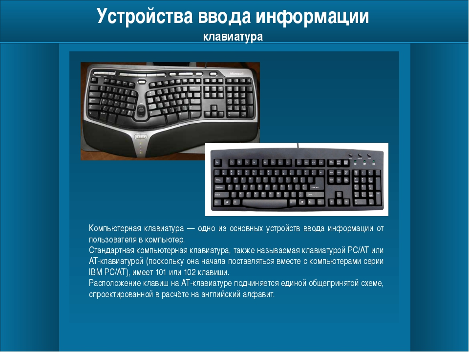 Устройства ввода информации мышь Манипуля́тор «мышь» (механическая, оптическ...