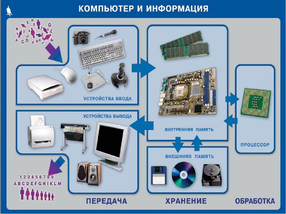 Внутренние устройства компьютера Видеокарта Процессор Жесткий диск Звуковая к...