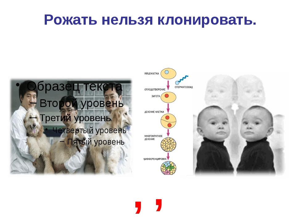 Рожать нельзя клонировать. , ,