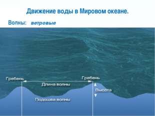 Движение воды в Мировом океане. Волны: ветровые Page *