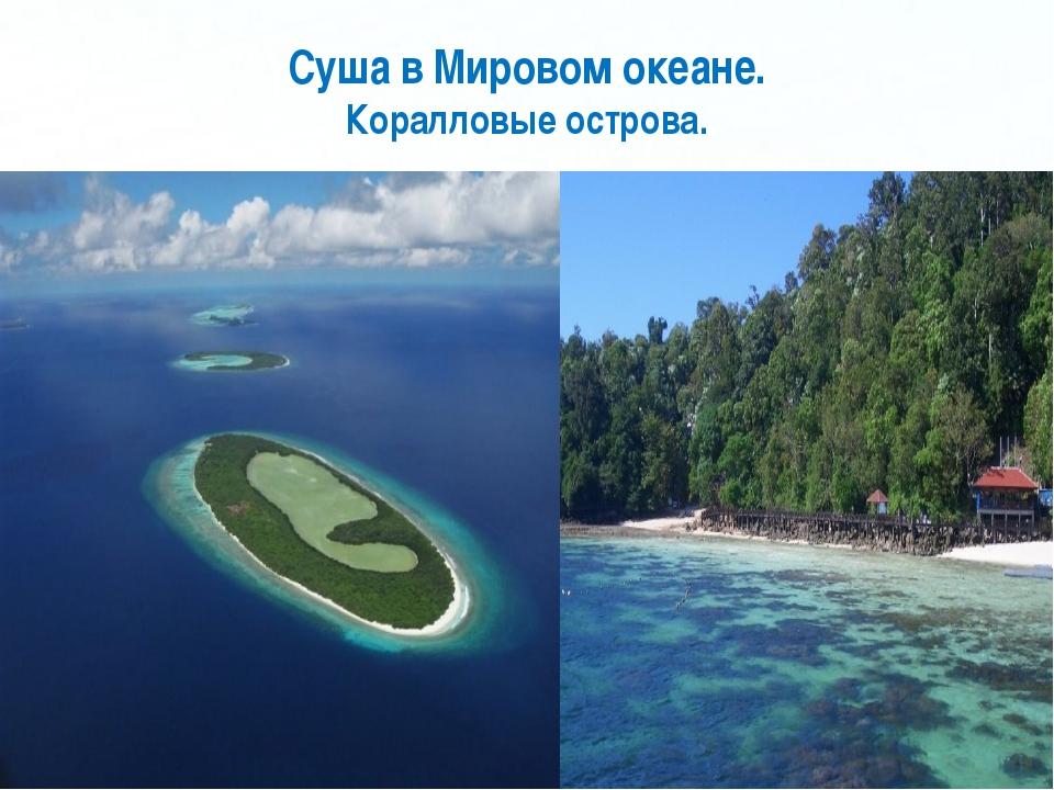 Суша в Мировом океане. Коралловые острова. Page *