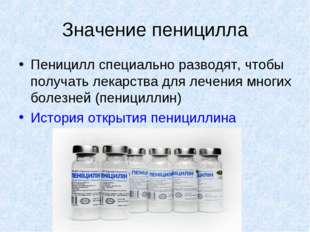 Значение пеницилла Пеницилл специально разводят, чтобы получать лекарства для