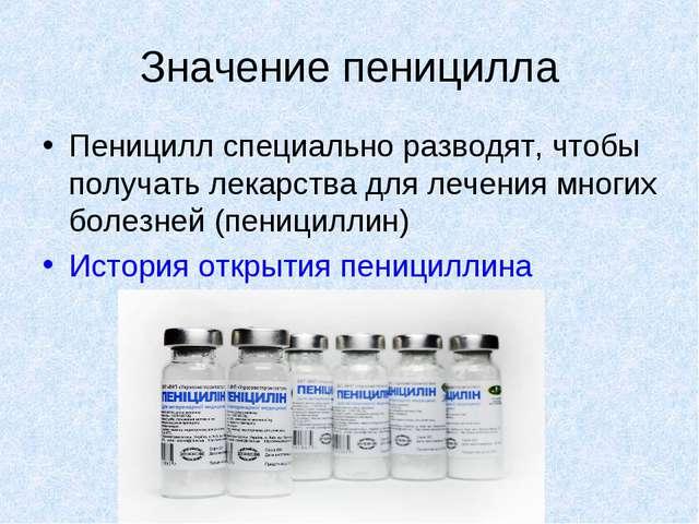 Значение пеницилла Пеницилл специально разводят, чтобы получать лекарства для...