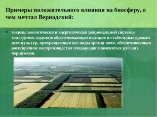 Примеры положительного влияния на биосферу, о чем мечтал Вернадский: модель э